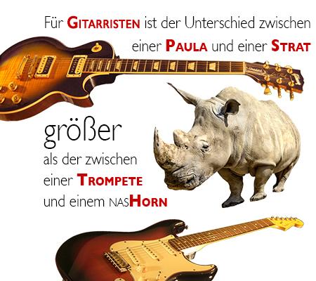Les Paul & Stratocaster